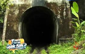 Tau Gak Sih? Terowongan Kereta Terpanjang di Indonesia ada di Pangandaran