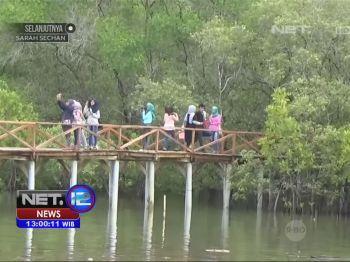 Jembatan Cinta Wisata Hutan Mangrove di Kabupaten Pangandaran - NET12