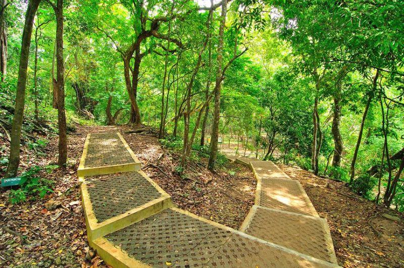 Taman Wisata Alam Pangandaran